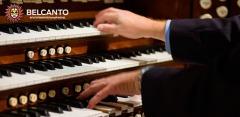 Концерты в Кафедральном соборе святых Петра и Павла