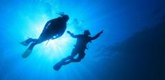 Обучение дайвингу в аквапарке «Мореон» от дайвинг-клуба «Морские ангелы»