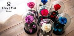 Вечные розы в колбе от Mary J Mall Flowers: 4 цвета на выбор!