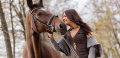 Прогулки на лошадях от частной конюшни «Эквилого»